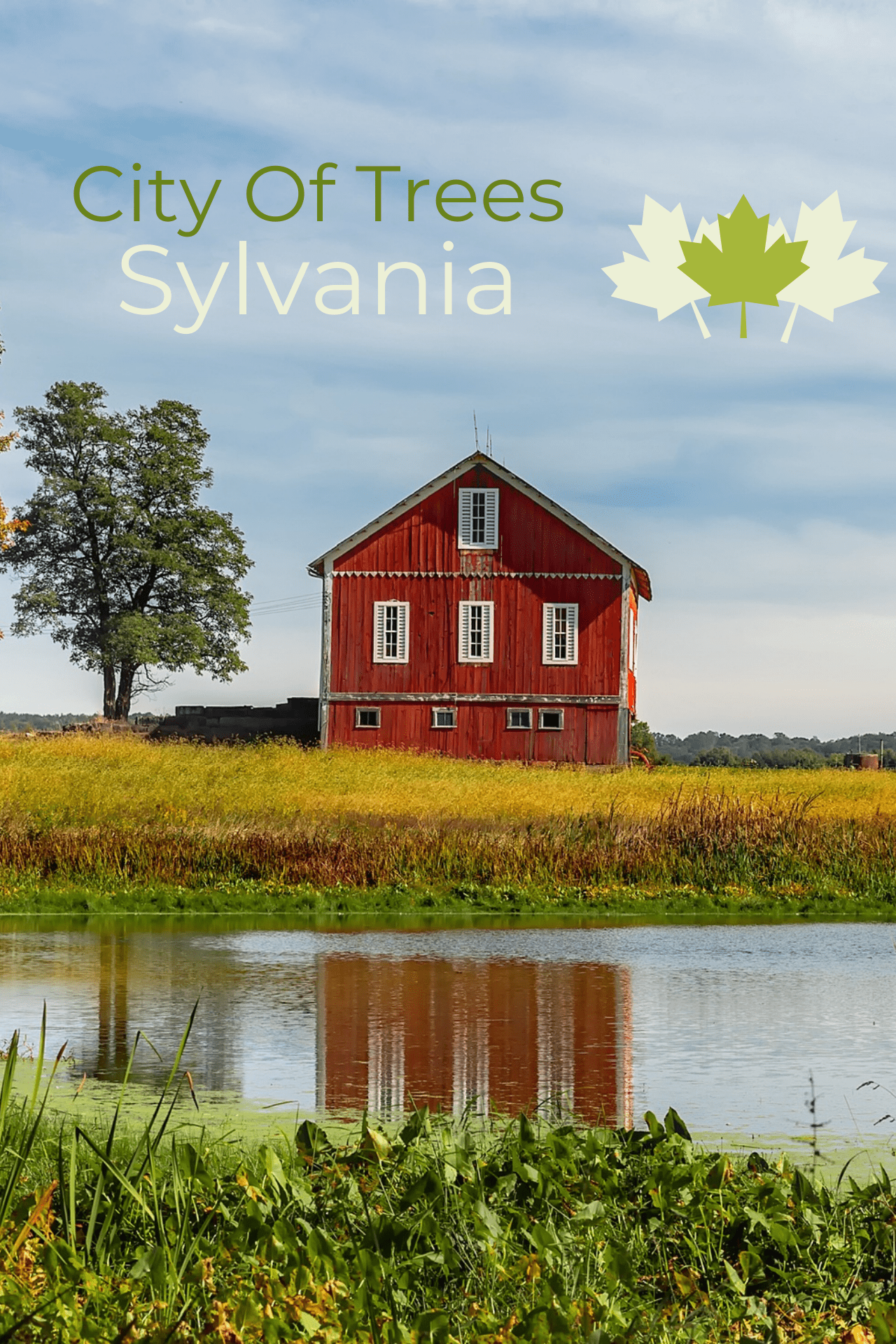City of Sylvania poster